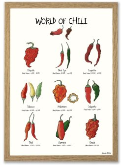 World of Chili A4 plakat