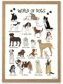 World of Dogs A4 plakat