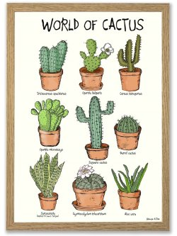World of Cactus A4 plakat
