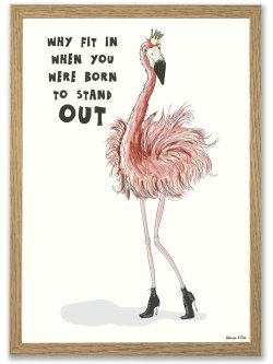 Flamingo - Born to stand 50 x 70 plakat